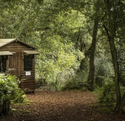 Nature hide at Pearl Lake